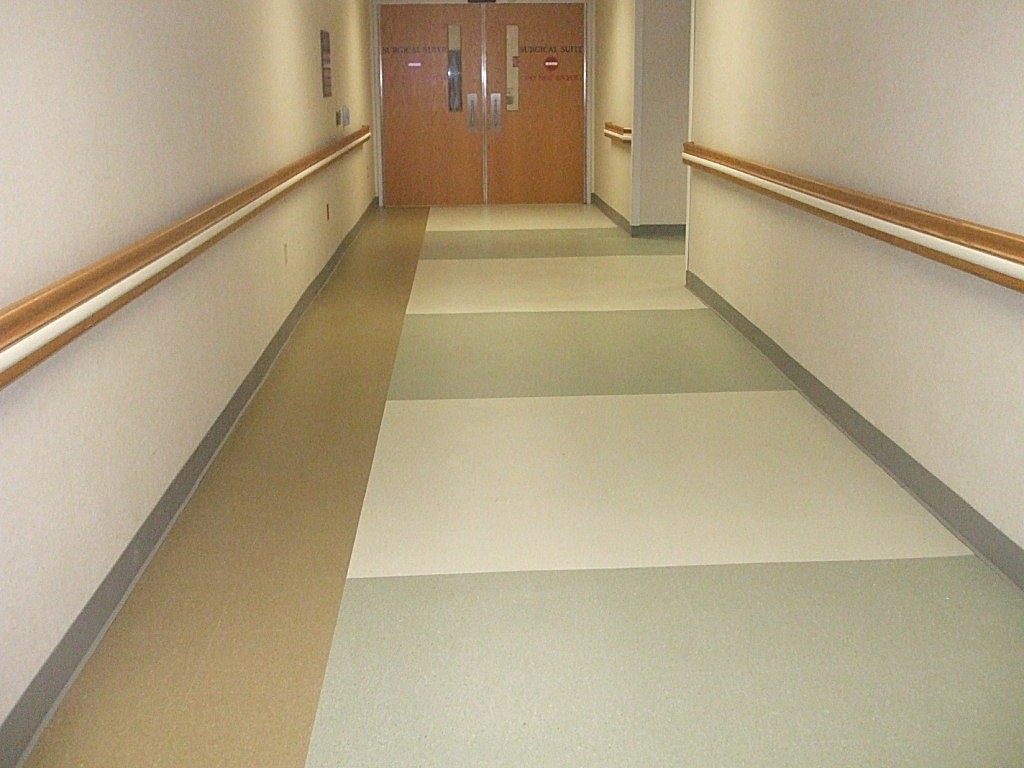 Flooring For Hallways Elegant Home Design